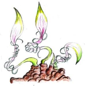 plants 9 - Copy (5)