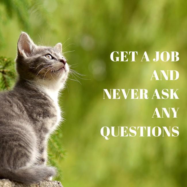 job 2